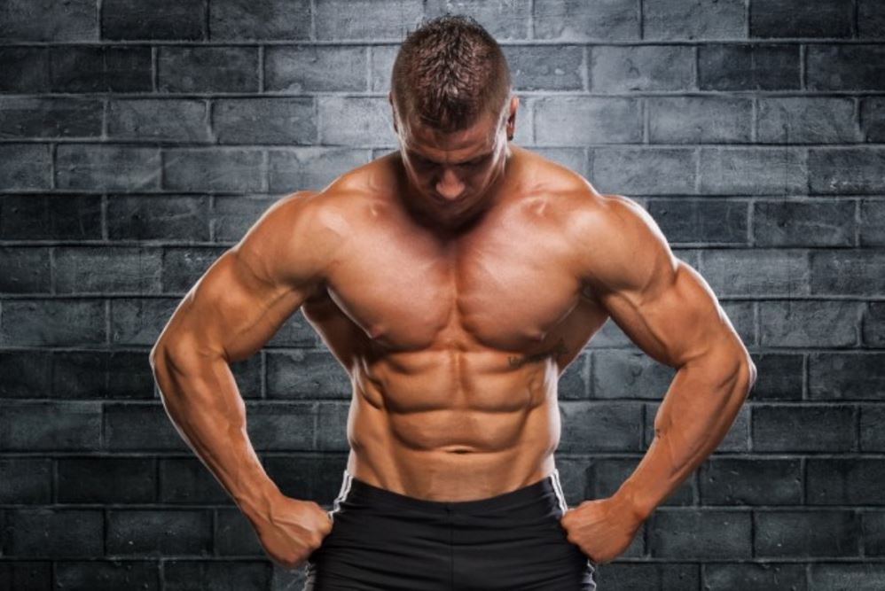 is bodybuilding a sport The most popular bodybuilding message boards if this is your first visit, be sure to check out the faq and read the forum rules by clicking the bolded link to the left  you may have to register before you can post: click the register link on the left to proc.